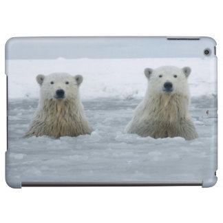 USA, Alaska, North Slope, 1002 Area 2 iPad Air Case