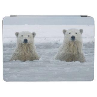 USA, Alaska, North Slope, 1002 Area 2 iPad Air Cover