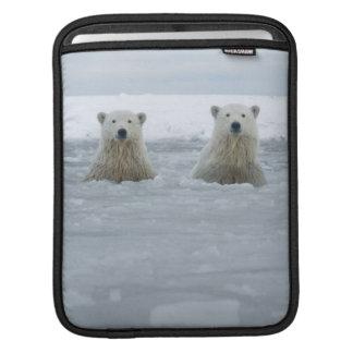 USA, Alaska, North Slope, 1002 Area 2 iPad Sleeve