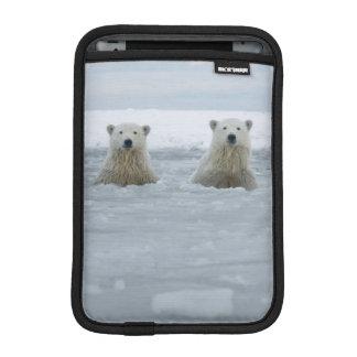 USA, Alaska, North Slope, 1002 Area 2 iPad Mini Sleeve