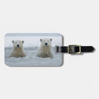 USA, Alaska, North Slope, 1002 Area 2 Luggage Tag