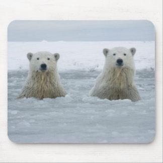 USA, Alaska, North Slope, 1002 Area 2 Mouse Pad