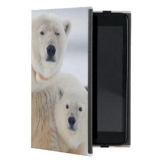 USA, Alaska, North Slope, 1002 Area 3 Case For iPad Mini