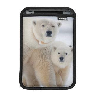 USA, Alaska, North Slope, 1002 Area 3 Sleeve For iPad Mini