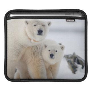 USA, Alaska, North Slope, 1002 Area 3 Sleeve For iPads