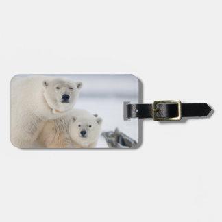 USA, Alaska, North Slope, 1002 Area 3 Luggage Tag