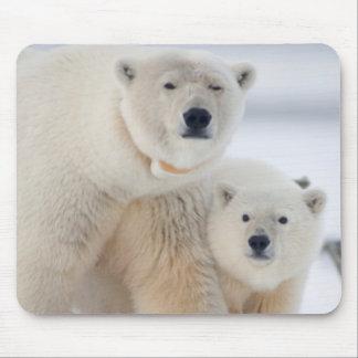 USA, Alaska, North Slope, 1002 Area 3 Mouse Pad