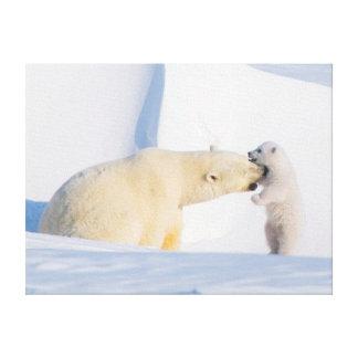 USA, Alaska, North Slope, 1002 Area 4 Canvas Print