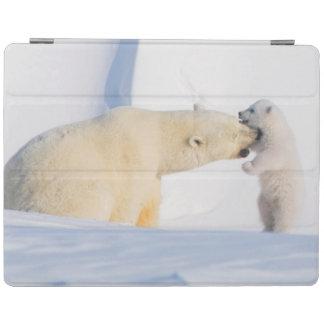 USA, Alaska, North Slope, 1002 Area 4 iPad Smart Cover