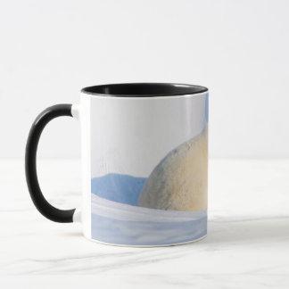 USA, Alaska, North Slope, 1002 Area 4 Mug