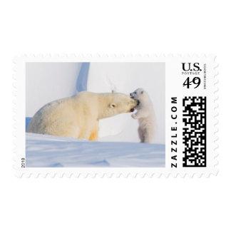 USA, Alaska, North Slope, 1002 Area 4 Postage