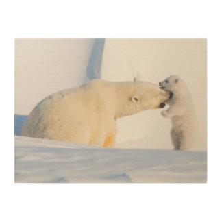 USA, Alaska, North Slope, 1002 Area 4 Wood Print