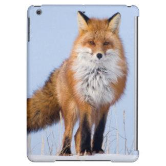 USA, Alaska, North Slope, 1002 Area iPad Air Covers
