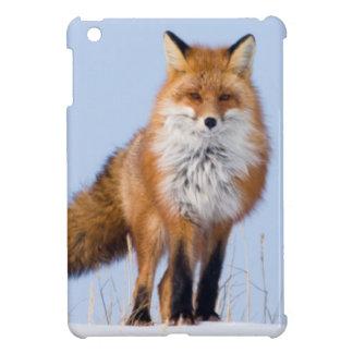 USA, Alaska, North Slope, 1002 Area iPad Mini Cover