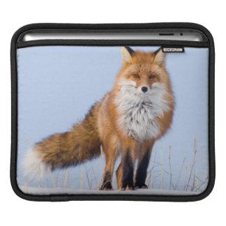 USA, Alaska, North Slope, 1002 Area iPad Sleeve