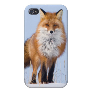 USA, Alaska, North Slope, 1002 Area Covers For iPhone 4