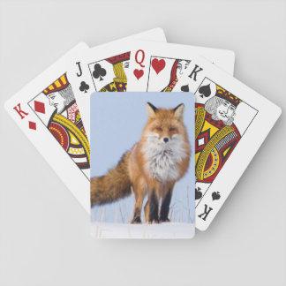 USA, Alaska, North Slope, 1002 Area Poker Cards