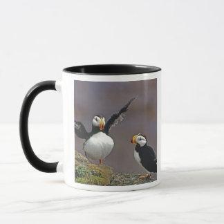 USA, Alaska, Pribilof Islands, St. George Mug