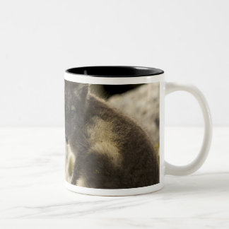 USA, Alaska, Pribilof Islands, St Paul. Blue 2 Two-Tone Coffee Mug