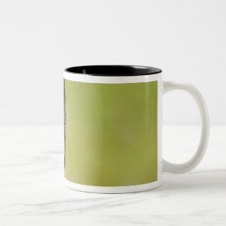USA, Alaska, Pribilof Islands, St Paul. Blue 3 Two-Tone Coffee Mug