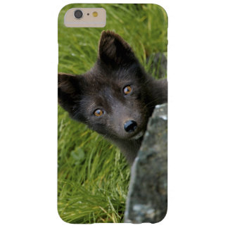 USA, Alaska, Pribilof Islands, St Paul. Blue Barely There iPhone 6 Plus Case