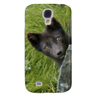 USA, Alaska, Pribilof Islands, St Paul. Blue Galaxy S4 Cases