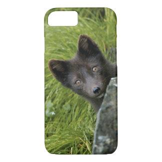USA, Alaska, Pribilof Islands, St Paul. Blue iPhone 7 Case