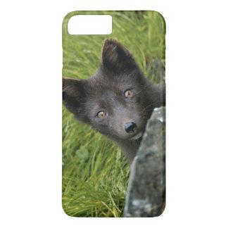 USA, Alaska, Pribilof Islands, St Paul. Blue iPhone 7 Plus Case