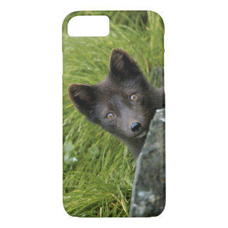 USA, Alaska, Pribilof Islands, St Paul. Blue iPhone 8/7 Case