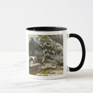 USA, Alaska, Pribilof Islands, St Paul. Blue Mug