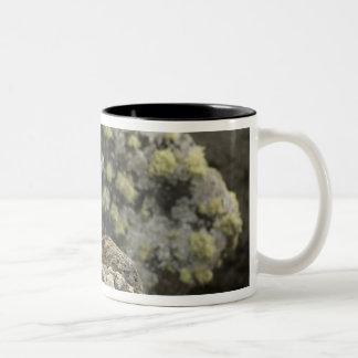 USA, Alaska, Pribilof Islands, St Paul. Blue Two-Tone Coffee Mug