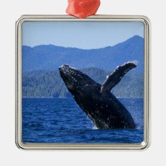 USA, Alaska, Prince of Wales Island. Humpback Metal Ornament