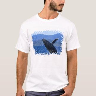 USA, Alaska, Prince of Wales Island. Humpback T-Shirt