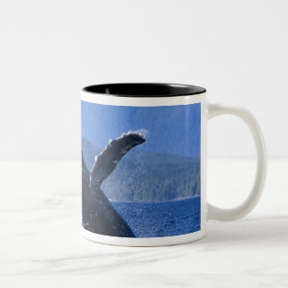 USA, Alaska, Prince of Wales Island. Humpback Two-Tone Coffee Mug