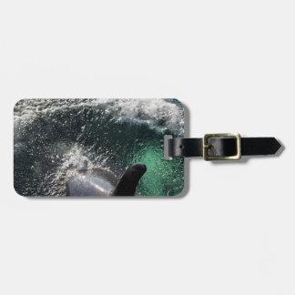 USA, Alaska, Tenakee Springs. Orca Bag Tag