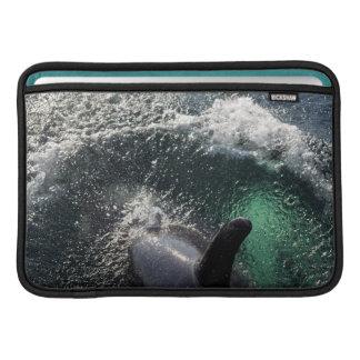 USA, Alaska, Tenakee Springs. Orca MacBook Air Sleeve