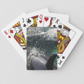 USA, Alaska, Tenakee Springs. Orca Playing Cards
