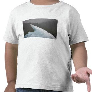USA, Alaska, Tongass National Forest, Bald Tshirts