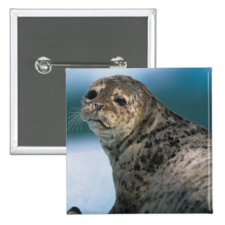 USA, Alaska, Tongass National Forest, Harbor 2 Inch Square Button