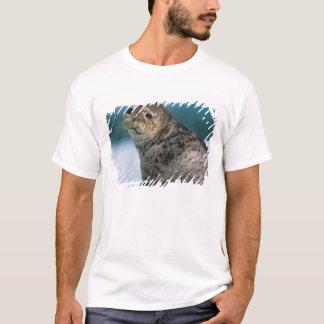 USA, Alaska, Tongass National Forest, Harbor T-Shirt