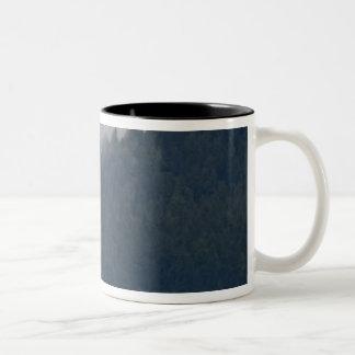 USA, Alaska, Tongass National Forest, Humpback 3 Two-Tone Coffee Mug