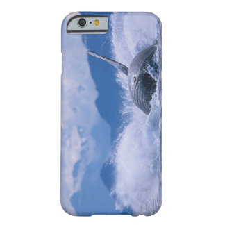 USA, Alaska, Tongass National Forest, Humpback 4 Barely There iPhone 6 Case