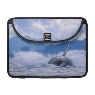 USA, Alaska, Tongass National Forest, Humpback 4 Sleeve For MacBooks
