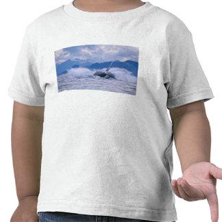 USA, Alaska, Tongass National Forest, Humpback 4 T-shirt