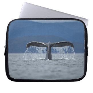 USA, Alaska, Tongass National Forest, Humpback Laptop Sleeve