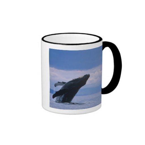 USA, Alaska, Tongass National Forest, Humpback Ringer Coffee Mug