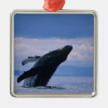 USA, Alaska, Tongass National Forest, Humpback Square Metal Christmas Ornament