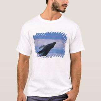 USA, Alaska, Tongass National Forest, Humpback T-Shirt
