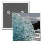 USA, Alaska, Tongass National Forest, Tracy 2 Pinback Button