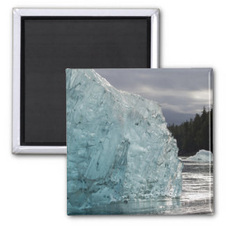 USA, Alaska, Tongass National Forest, Tracy 2 Magnet